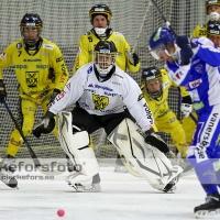 2012-01-20 Bandy Elitserien, Vetlanda BK IFK Vänersborg: 2-1