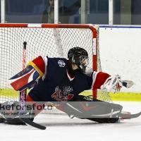 2012-02-26, Ishockey,  Åseda IF - IF Kalmar Hockey: 10-1