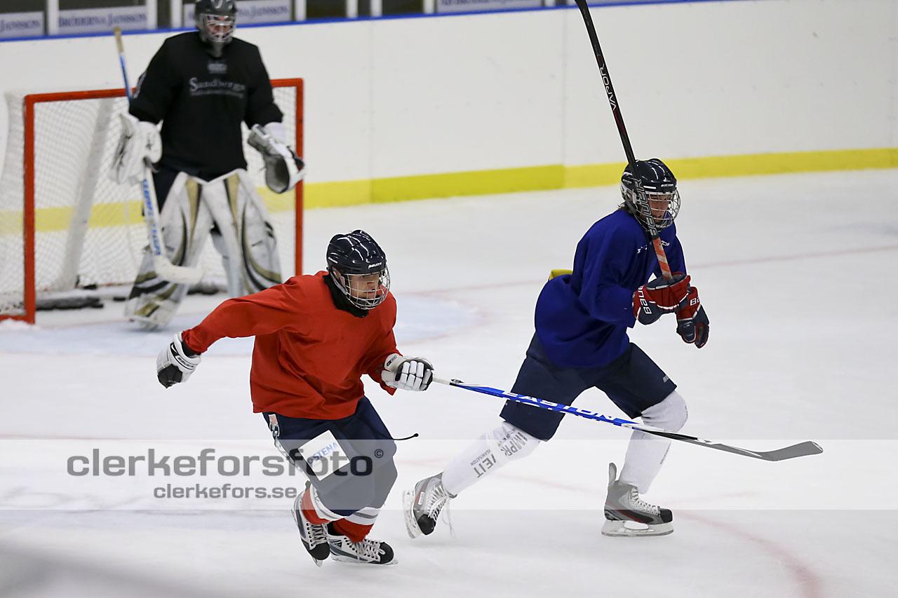 2012-08-06, Ishockey,  Halmstad Hammers - :