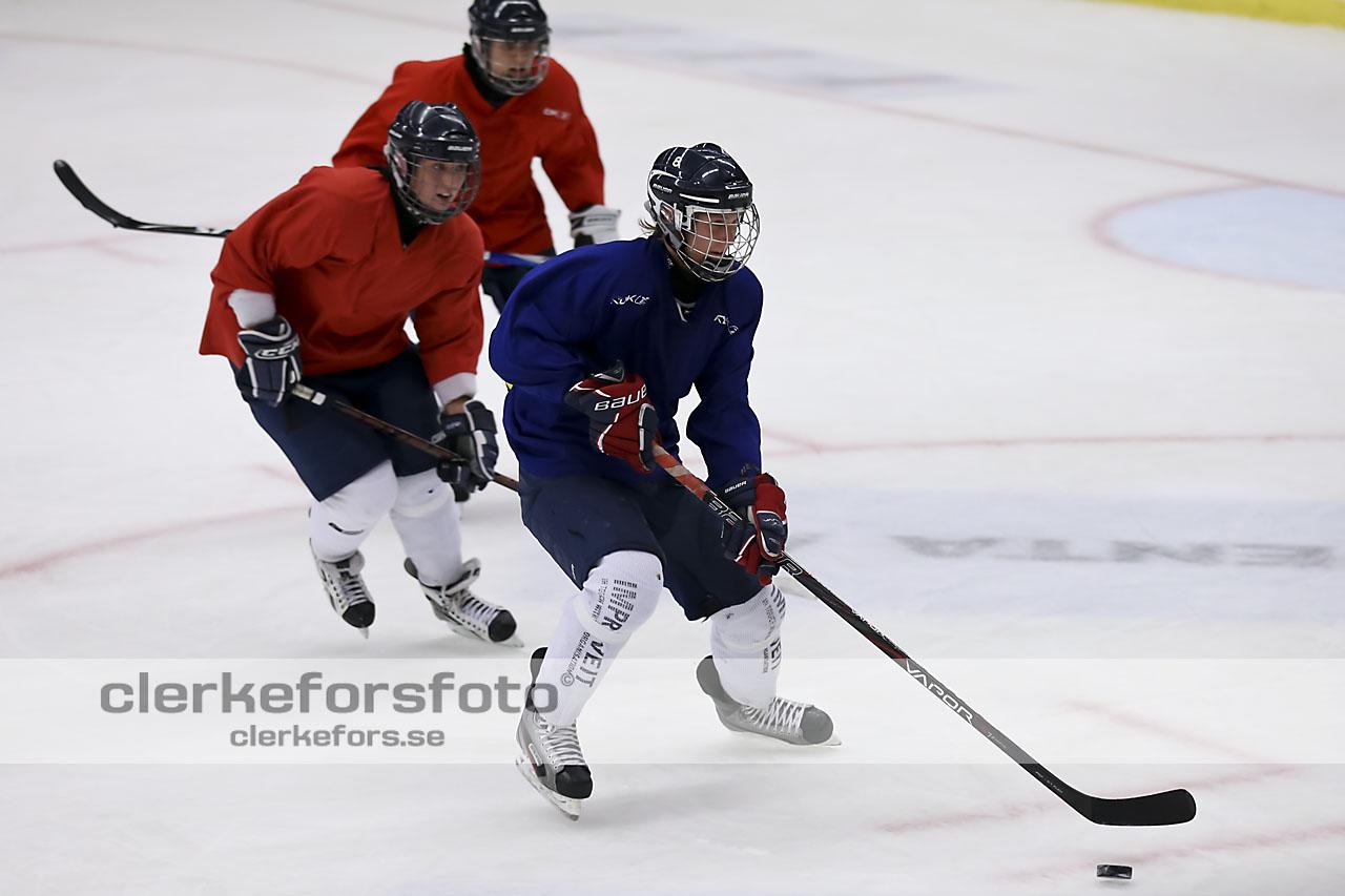 2012-08-07, Ishockey,  Halmstad Hammers - :