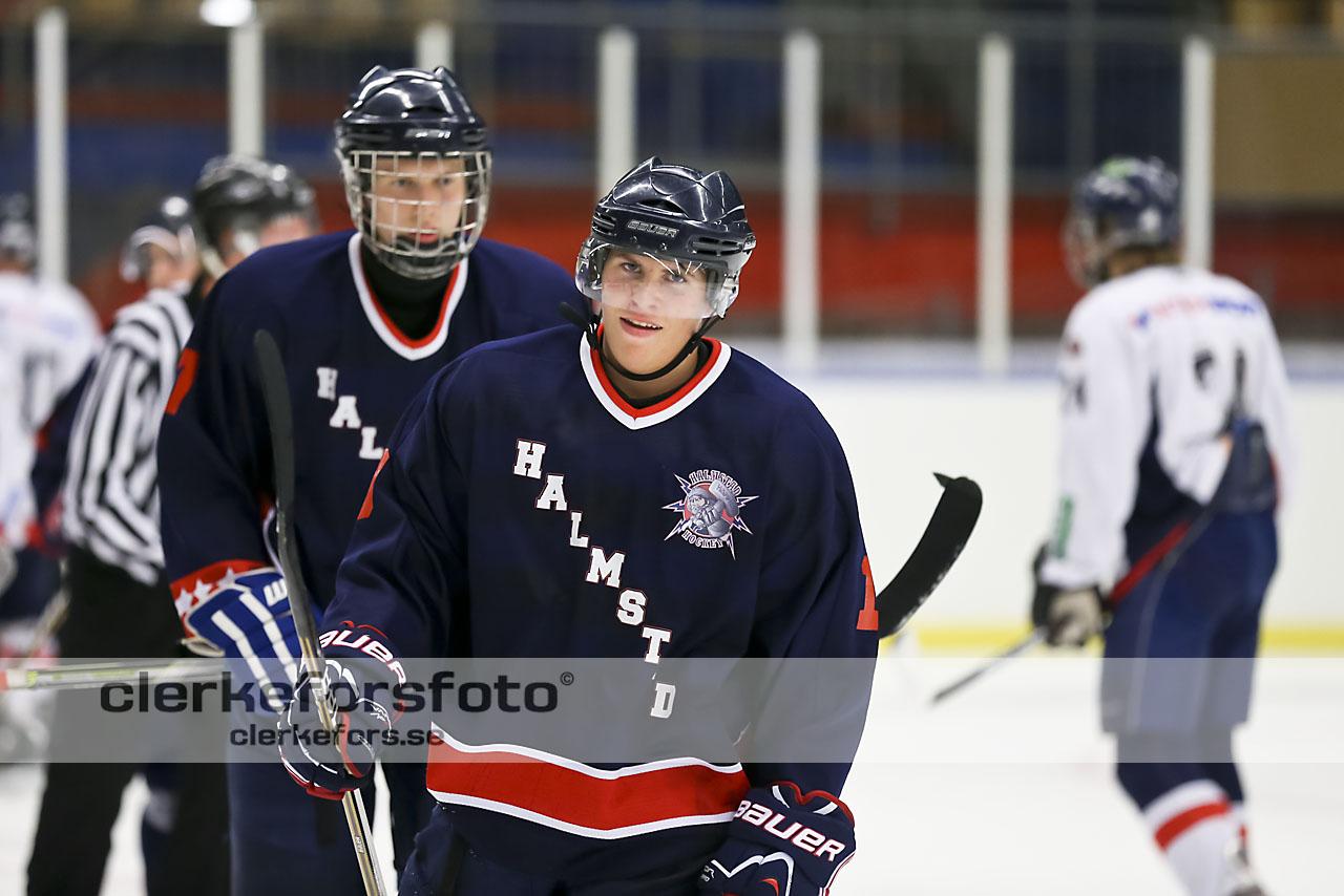 helsingborgs hockey