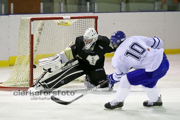 2012-11-04, Ishockey, Virserum SGF - Skillingaryd IS: