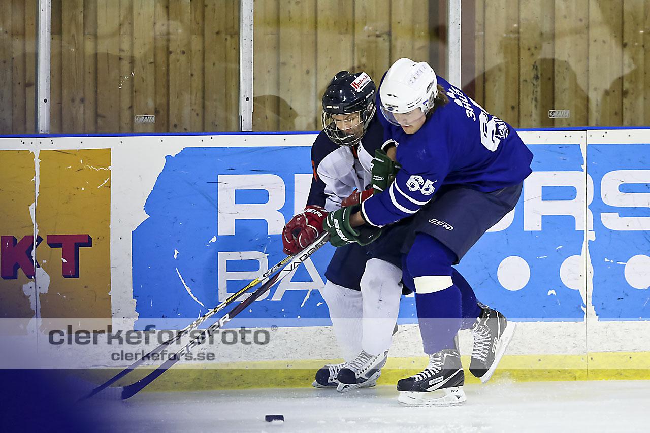 2013-01-05, Ishockey,  Jonstorp IF - Halmstad Hammers: 6 - 5 e str.